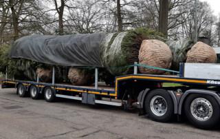Aanvoer grote boom truck